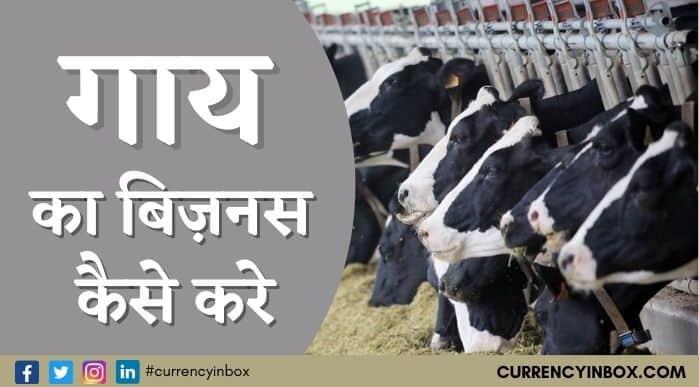 Cow Ka Business Kaise Kare